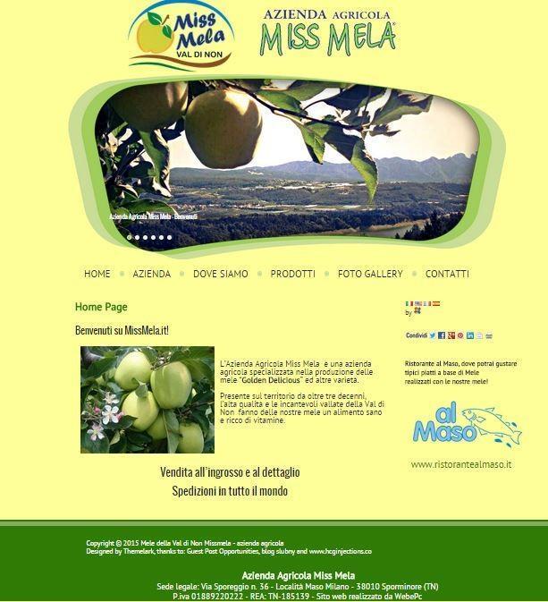 Sito realizzato per l'azienda agricola MissMela - www.missmela.it