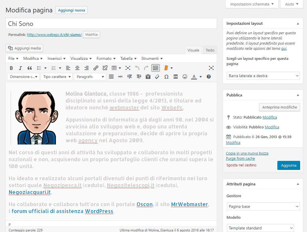 siti wordpress professionali